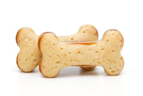 犬のおやつの画像